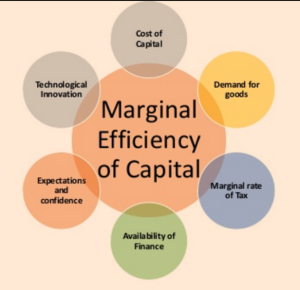 Capital Efficiency